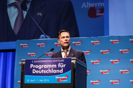 Damit die AfD eine Alternative bleibt: Jedem Mitglied eine Stimme